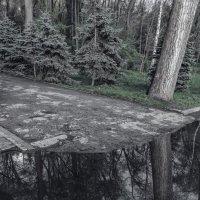 Парк. :: Larisa Brandusa