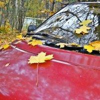 Осень :: Натали Пам