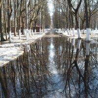Весна пришла :: шубнякова