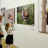На фотовыставке Первозданная Россия :: Николай Ярёменко