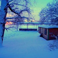 Зимний сон. :: Miko Baltiyskiy