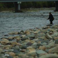 На рыбалке молодеем :: Алексей Коган