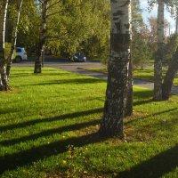 Осень 2 октября :: Александр Попков