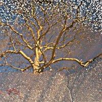 Дерево Сефирот :: Валерий Розенталь