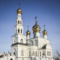 Вид собора. :: юрий Амосов