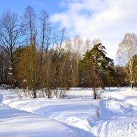 Лесными тропами :: Natalia Smirnova