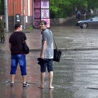 Дождь. :: Наталья