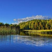 Красота реки Саркойоки. :: Владимир Ильич Батарин