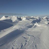 Северодвинск. Белое море сегодня (1) :: Владимир Шибинский