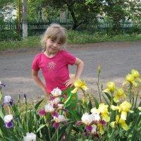 Весна идет, весне дорогу :: Ирина Диденко