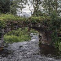 Старый мост :: shvlad