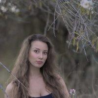 В лесу :: Юрий Тойбин