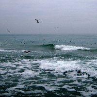 Над седой пучиной моря :: Людмила