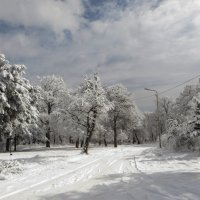 Кружится вновь снежинок хоровод :: Наталья (D.Nat@lia) Джикидзе (Берёзина)