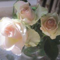 Букет из белых роз :: Елена Семигина