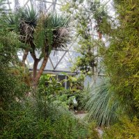 В ботаническом саду города Дюссельдорф :: Witalij Loewin
