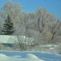 Домик зимой :: Эльвира Ермакова