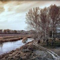 Есть в русской природе усталая нежность... :: Ирина Falcone