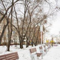 К весенним посиделкам готовы. :: юрий Амосов
