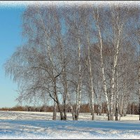 зимняя фантазия... :: Валентина. .