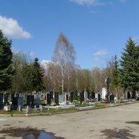 Жизнь   -------  это   миг  ............ :: Андрей  Васильевич Коляскин