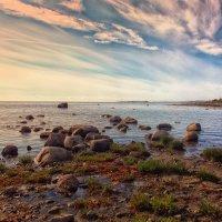 Закат на Белом море. Соловецкие острова :: Нина