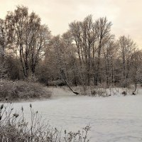На замерзших прудах... :: Sergey Gordoff