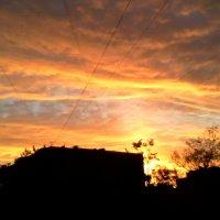 Яркий закат :: Svetlana Lyaxovich
