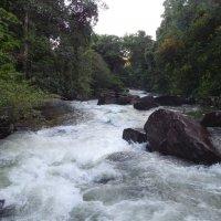 Ко Куд. Закат на водопаде Клонг-Чао. :: Лариса (Phinikia) Двойникова