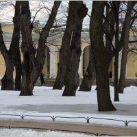весна идёт :: sv.kaschuk