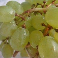 Виноград :: Нина Корешкова