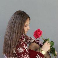роза и девушка :: иван