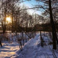 Зимний вечер......... :: Александр Селезнев