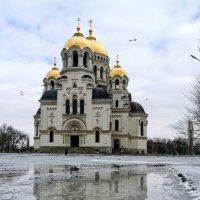 Акварель зимы. :: Олег Барзолевский