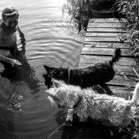 Summer swimming :: Света Гончарова