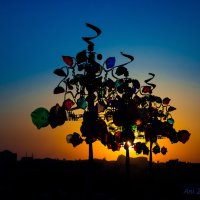 Сказочный закат :: Ani Zargaryan