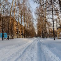 Декабрь 2014 года, после снегопада. :: Виктор Иванович