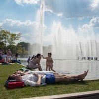 Что может быть лучше в жаркий день :: Anna Shevtsova
