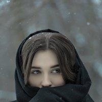 Зимняя прохлада... :: Сергей Гутерман