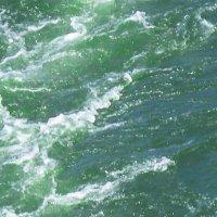 Вода в Дону бывает и такой... :: татьяна