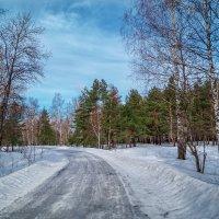 Последние дни зимы :: Андрей Дворников
