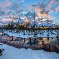 Река на болоте. :: Фёдор. Лашков
