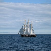 В синем море :: Ольга