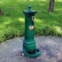 Колонка в парке :: Татьяна Пальчикова