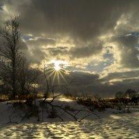 И всеж однажды солнца луч на землю сном весенним ляжет... :: Александр Ковальчук