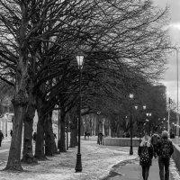 Прогулка в Нескучный сад :: Shurix Neo