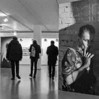 Такие родные знакомые стены! :: Ирина Данилова