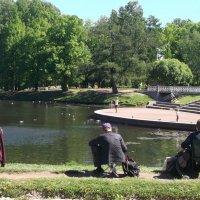 Отдых в парке :: Svetlana Lyaxovich