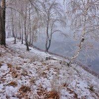 За полчаса до зимы... :: Екатерина Торганская