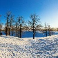 Зима :: Максим Калинин